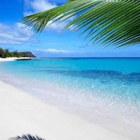Kridhvid strand på Fiji