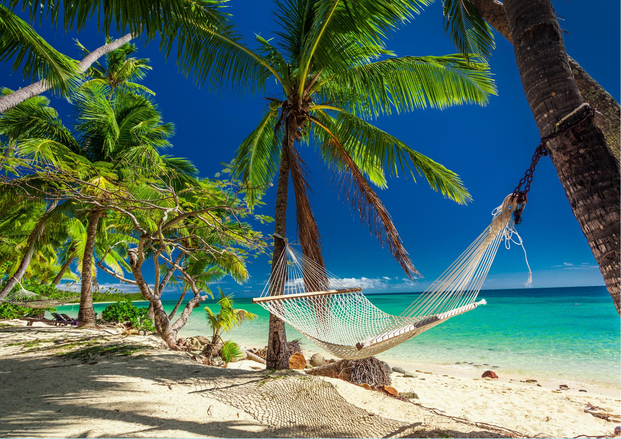Hængekøje mellem palmer på strand